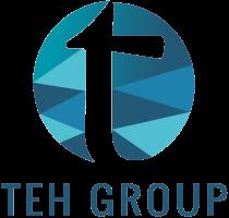 Teh Group Virtual World logo
